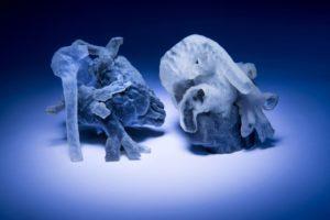 model cardiac 3D obtinut prin imprimare